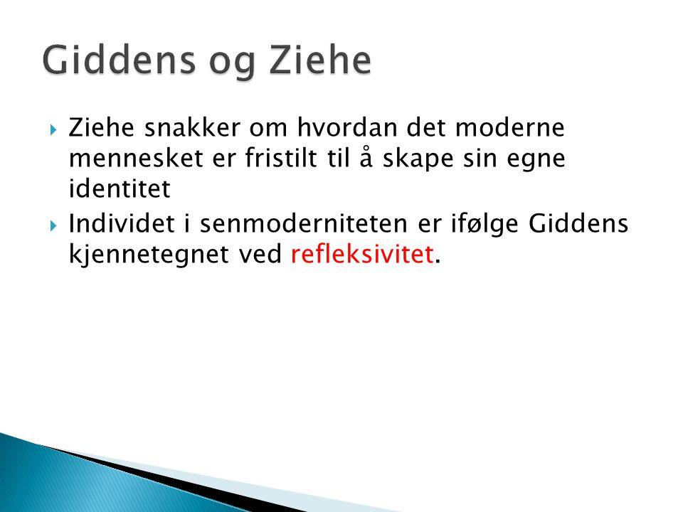  Ziehe snakker om hvordan det moderne mennesket er fristilt til å skape sin egne identitet  Individet i senmoderniteten er ifølge Giddens kjennetegn