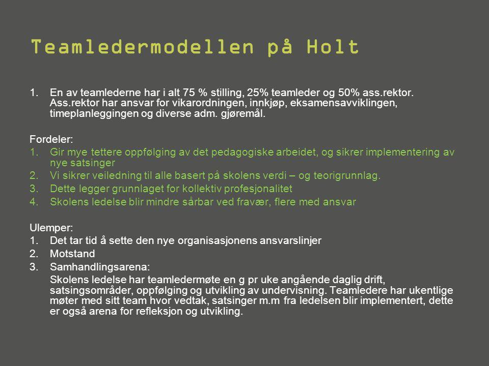 Teamledermodellen på Holt 1.En av teamlederne har i alt 75 % stilling, 25% teamleder og 50% ass.rektor. Ass.rektor har ansvar for vikarordningen, innk