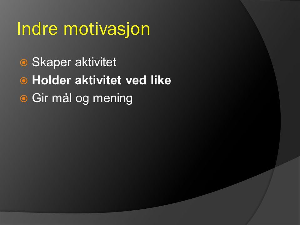 Indre motivasjon  Skaper aktivitet  Holder aktivitet ved like  Gir mål og mening