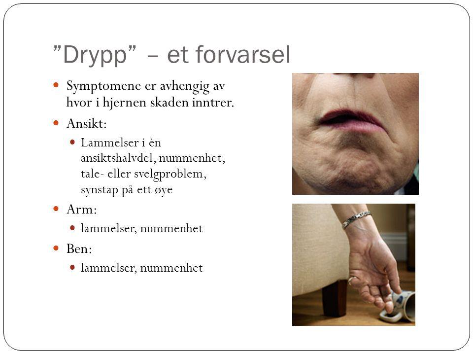 """""""Drypp"""" – et forvarsel  Symptomene er avhengig av hvor i hjernen skaden inntrer.  Ansikt:  Lammelser i èn ansiktshalvdel, nummenhet, tale- eller sv"""