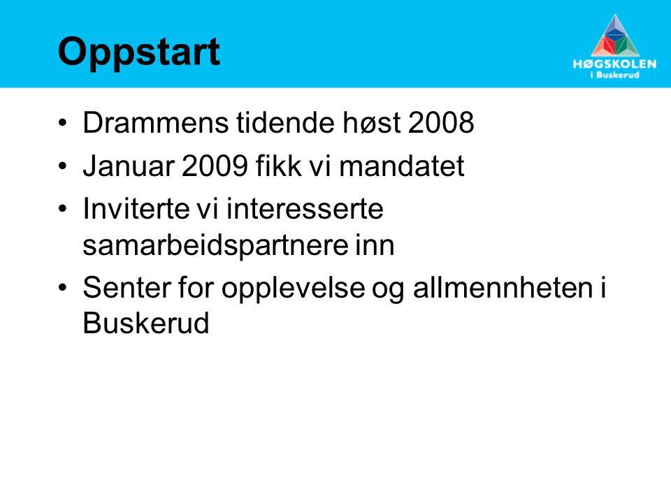 Organisering •Forprosjekt høst 2009 – mai 2010 med 8 regionale partnere (BI, Buskerud Fylkeskommune, Drammens Tidende, Vestre Viken HF, Drammen kommune, MSD, NFR, HiBu) ledet av Papirbredden Innovasjon.