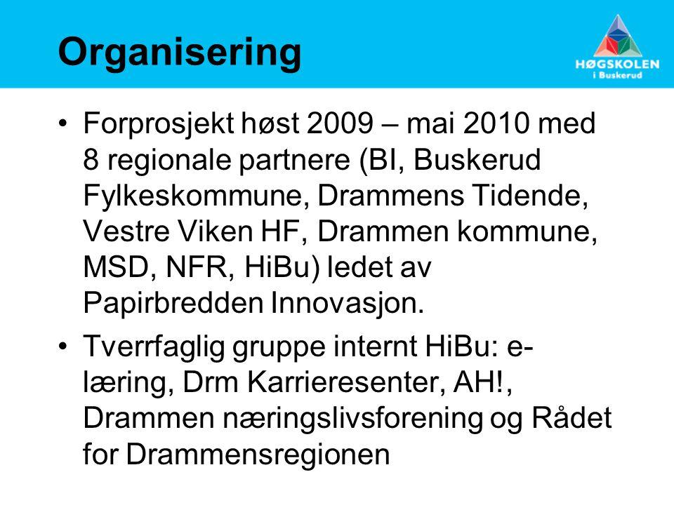 kommunale partnere Bykommunen DRAMMEN Utviklingssenter for hjemmetjenester Distriktskommunen ÅL Utviklingssenter for sykehjem
