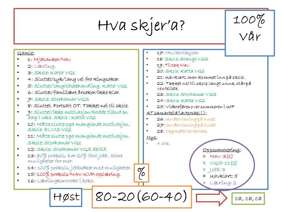• 17: Hel/deltidsjobb.• 18: Skole: Stange VGS • 19: Tiltak Nav.
