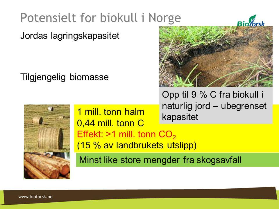 Potensielt for biokull i Norge Jordas lagringskapasitet Tilgjengelig biomasse Minst like store mengder fra skogsavfall 1 mill. tonn halm 0,44 mill. to