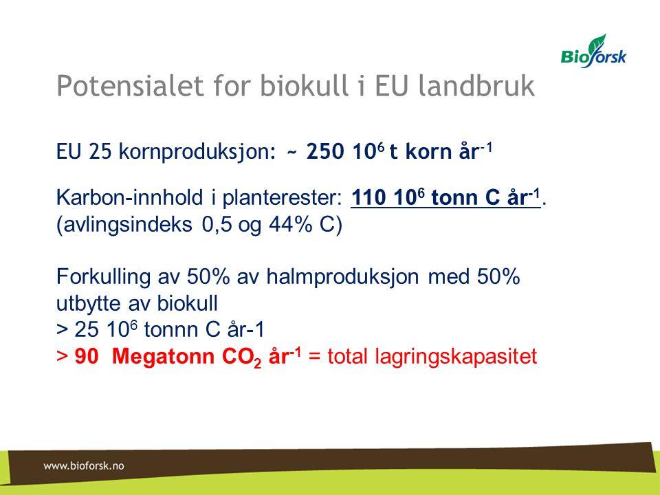 Potensialet for biokull i EU landbruk EU 25 kornproduksjon: ~ 250 10 6 t korn år -1 Karbon-innhold i planterester: 110 10 6 tonn C år -1. (avlingsinde