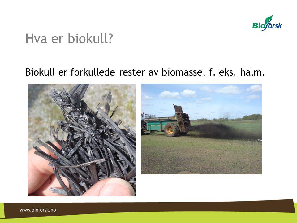 Hva er biokull? Biokull er forkullede rester av biomasse, f. eks. halm.