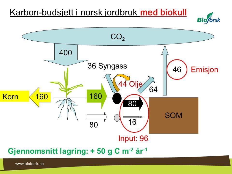 400 SOM CO 2 16 64 160 80 Korn Karbon-budsjett i norsk jordbruk med biokull Input: 96 46 Emisjon Gjennomsnitt lagring: + 50 g C m -2 år -1 160 80 36 S