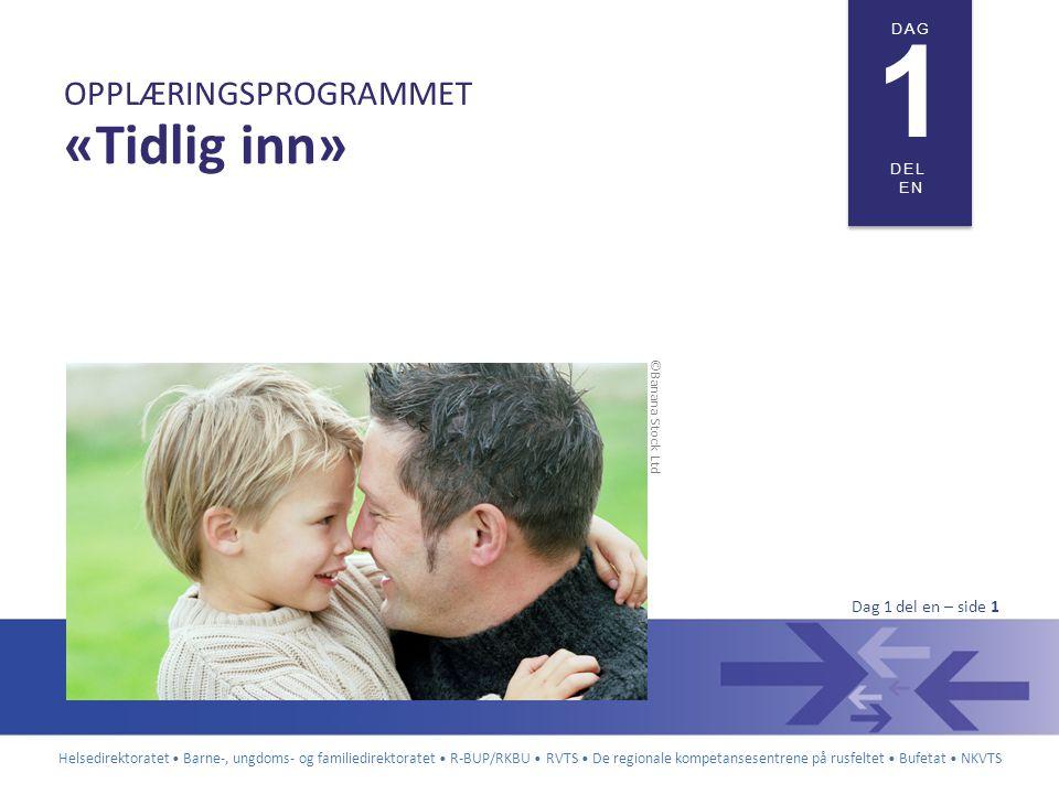 Helsedirektoratet • Barne-, ungdoms- og familiedirektoratet • R-BUP/RKBU • RVTS • De regionale kompetansesentrene på rusfeltet • Bufetat • NKVTS DAG 1