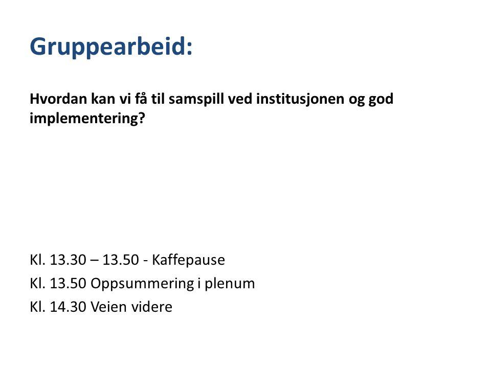 Gruppearbeid: Hvordan kan vi få til samspill ved institusjonen og god implementering? Kl. 13.30 – 13.50 - Kaffepause Kl. 13.50 Oppsummering i plenum K