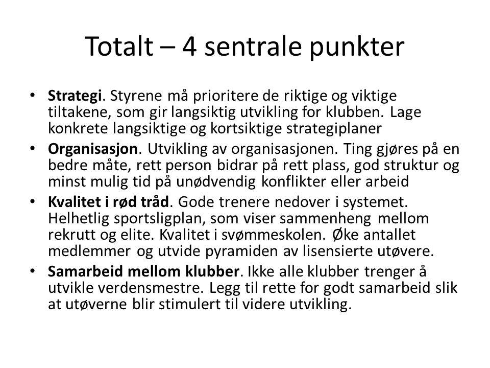 Totalt – 4 sentrale punkter • Strategi.