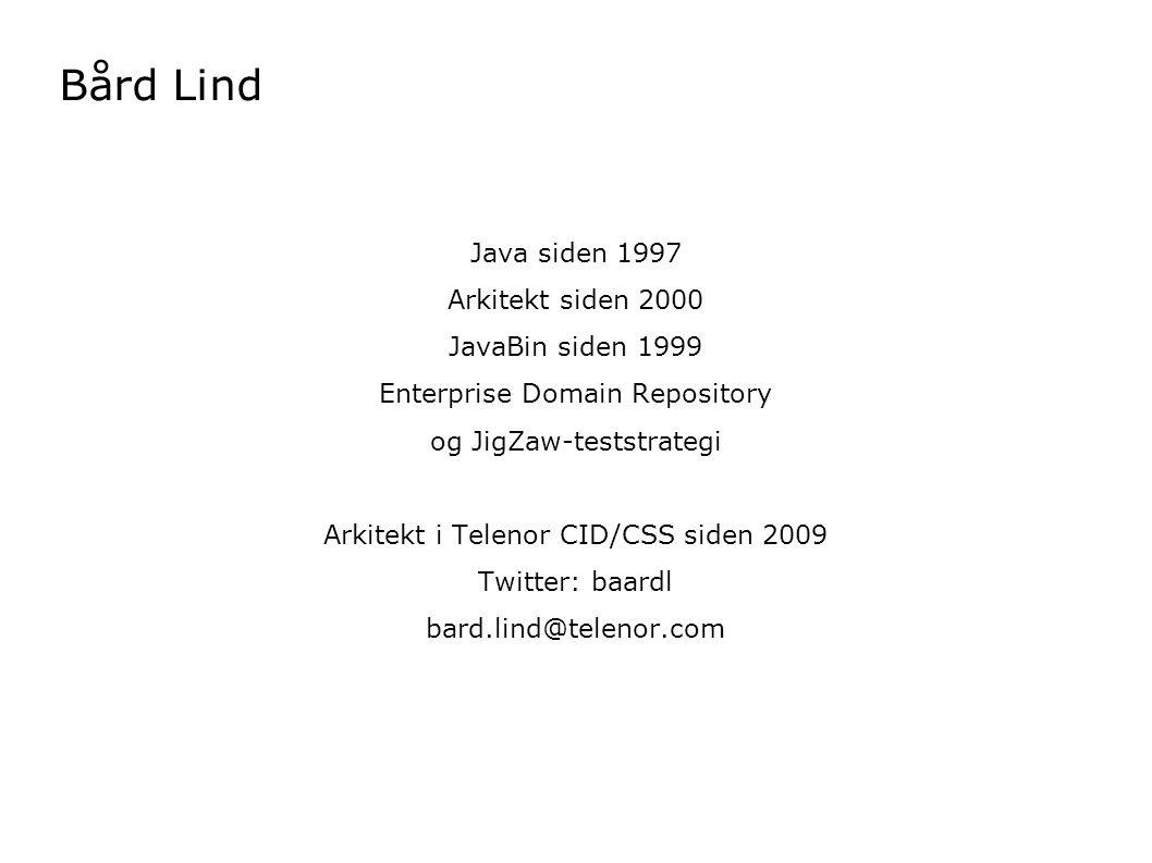 Java siden 1997 Arkitekt siden 2000 JavaBin siden 1999 Enterprise Domain Repository og JigZaw-teststrategi Arkitekt i Telenor CID/CSS siden 2009 Twitt