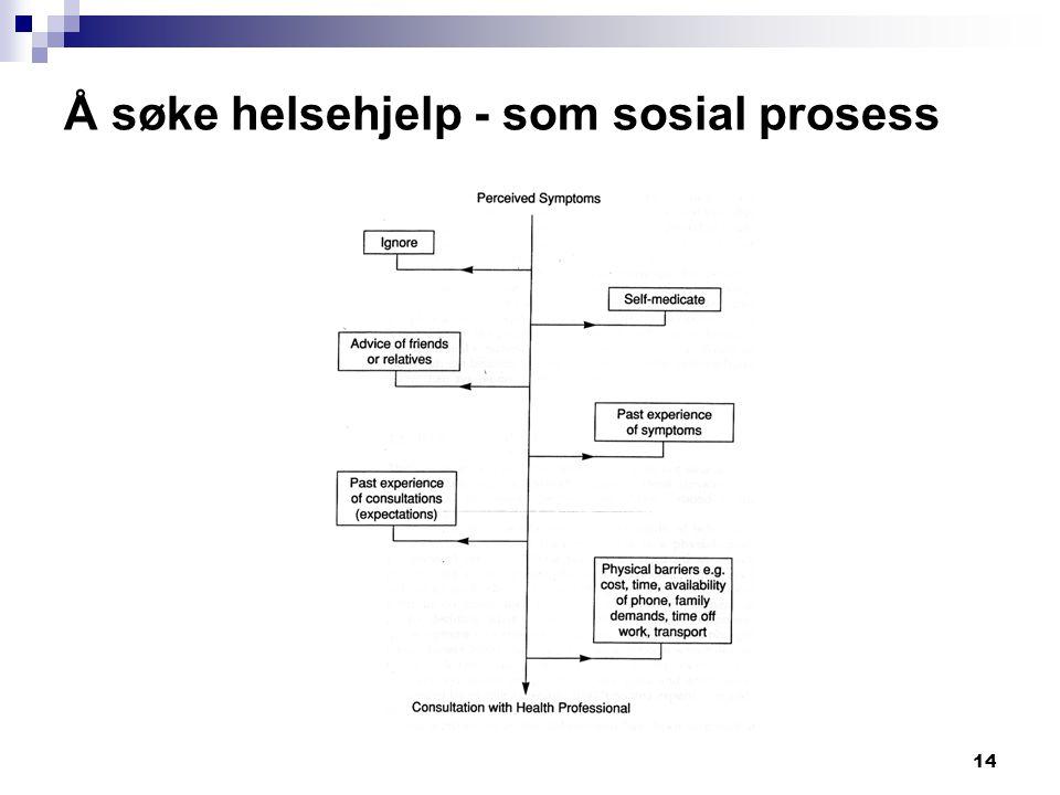 14 Å søke helsehjelp - som sosial prosess
