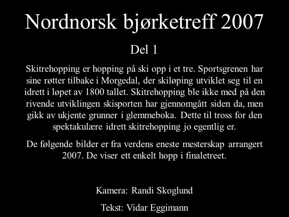 Nordnorsk bjørketreff 2007 Del 1 Skitrehopping er hopping på ski opp i et tre.