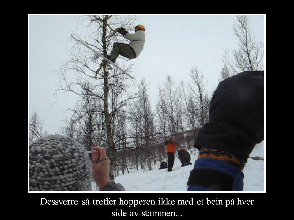 Dessverre så treffer hopperen ikke med et bein på hver side av stammen...