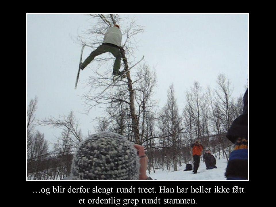 …og blir derfor slengt rundt treet. Han har heller ikke fått et ordentlig grep rundt stammen.