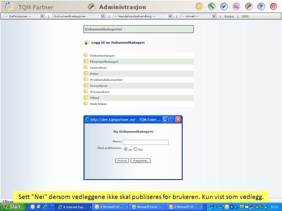 Sett Nei dersom vedleggene ikke skal publiseres for brukeren. Kun vist som vedlegg.
