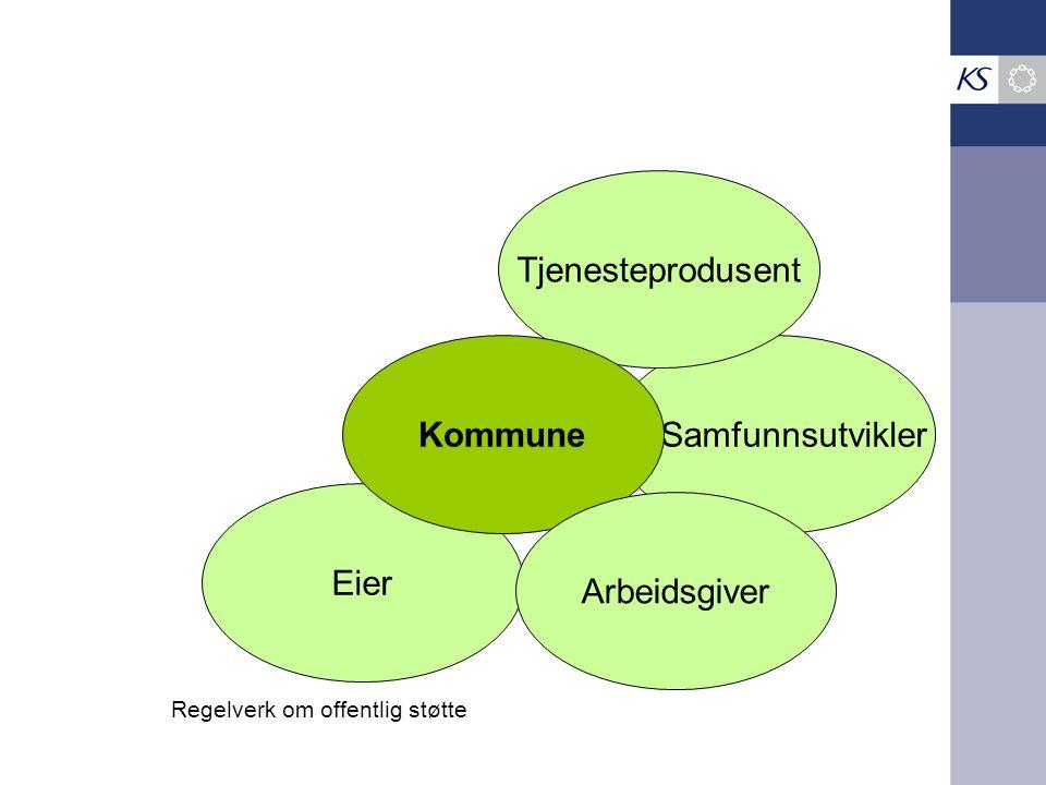 Samfunnsutvikler Eier Tjenesteprodusent Kommune Arbeidsgiver Regelverk om offentlig støtte