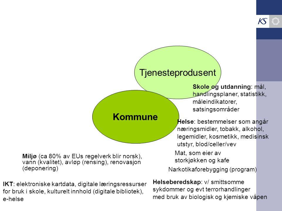Tjenesteprodusent Kommune Skole og utdanning: mål, handlingsplaner, statistikk, måleindikatorer, satsingsområder Helse: bestemmelser som angår nærings