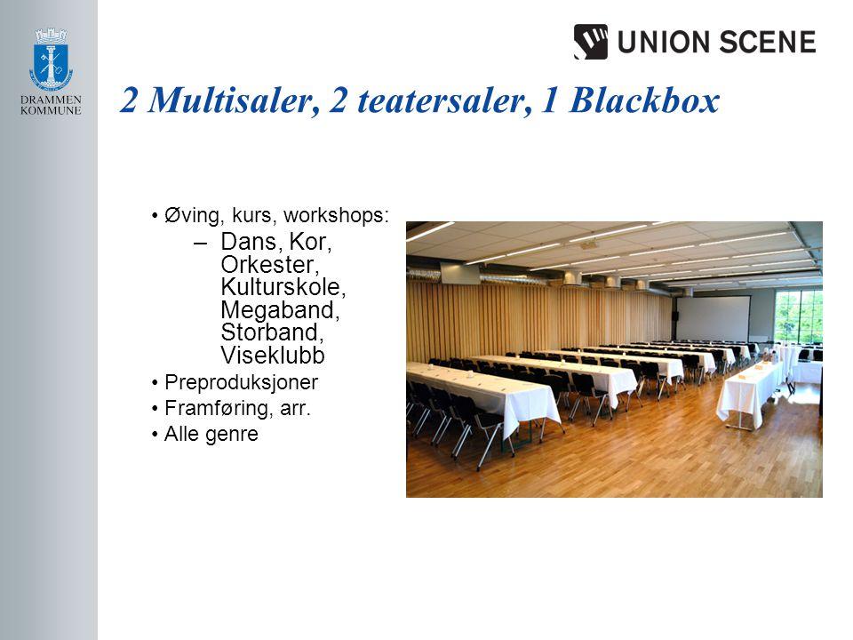 2 Multisaler, 2 teatersaler, 1 Blackbox • Øving, kurs, workshops: –Dans, Kor, Orkester, Kulturskole, Megaband, Storband, Viseklubb • Preproduksjoner • Framføring, arr.