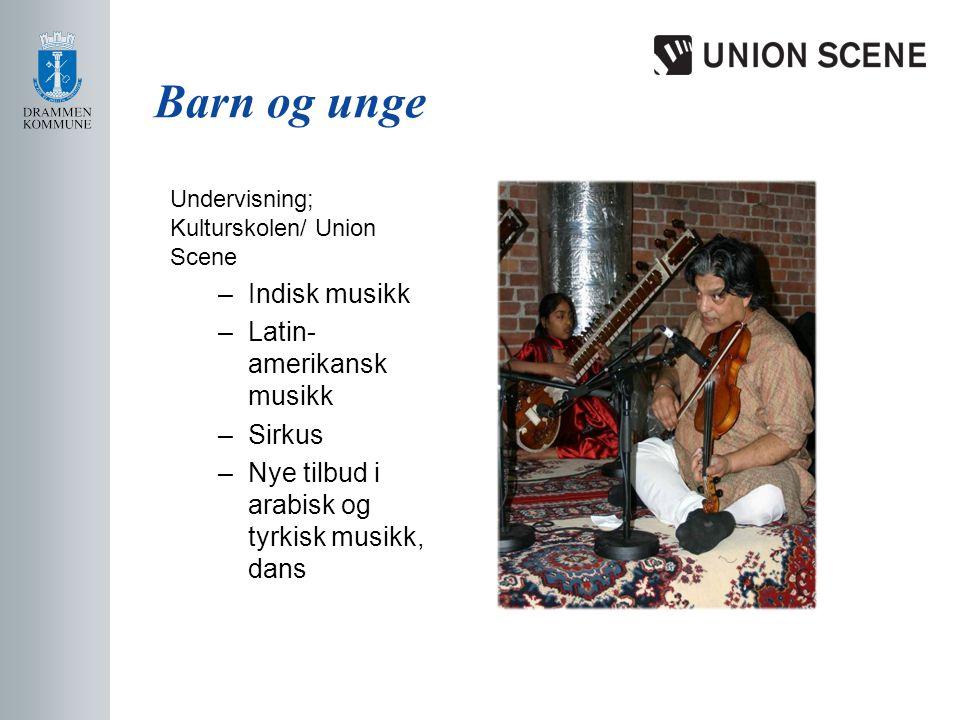 Barn og unge Undervisning; Kulturskolen/ Union Scene –Indisk musikk –Latin- amerikansk musikk –Sirkus –Nye tilbud i arabisk og tyrkisk musikk, dans