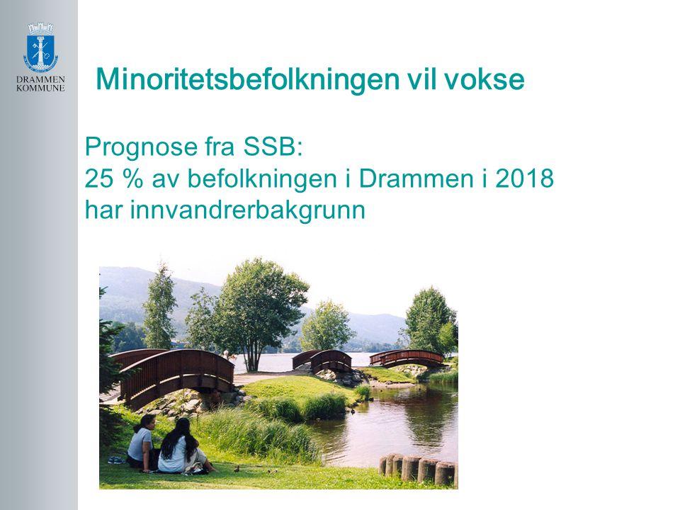 Minoritetsbefolkningen vil vokse Prognose fra SSB: 25 % av befolkningen i Drammen i 2018 har innvandrerbakgrunn