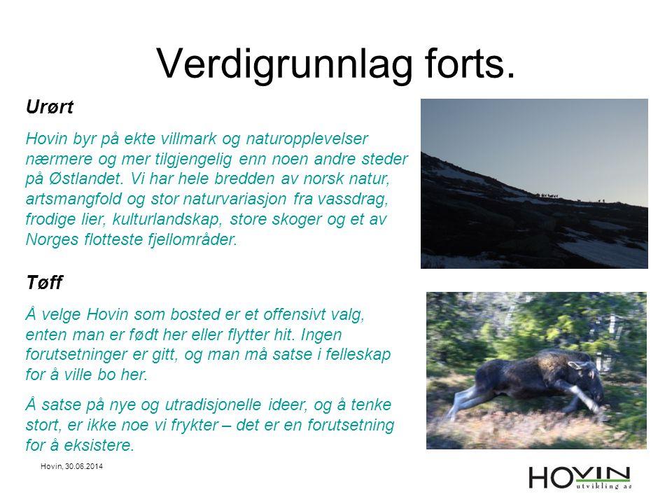 Hovin, 30.06.2014 11 RV ORMEMYR-AUSTBYGDE Mål: •Hovinvegen skal ha samme kvalitet som Tinnsjøvegen •Inngå i Turistveg.