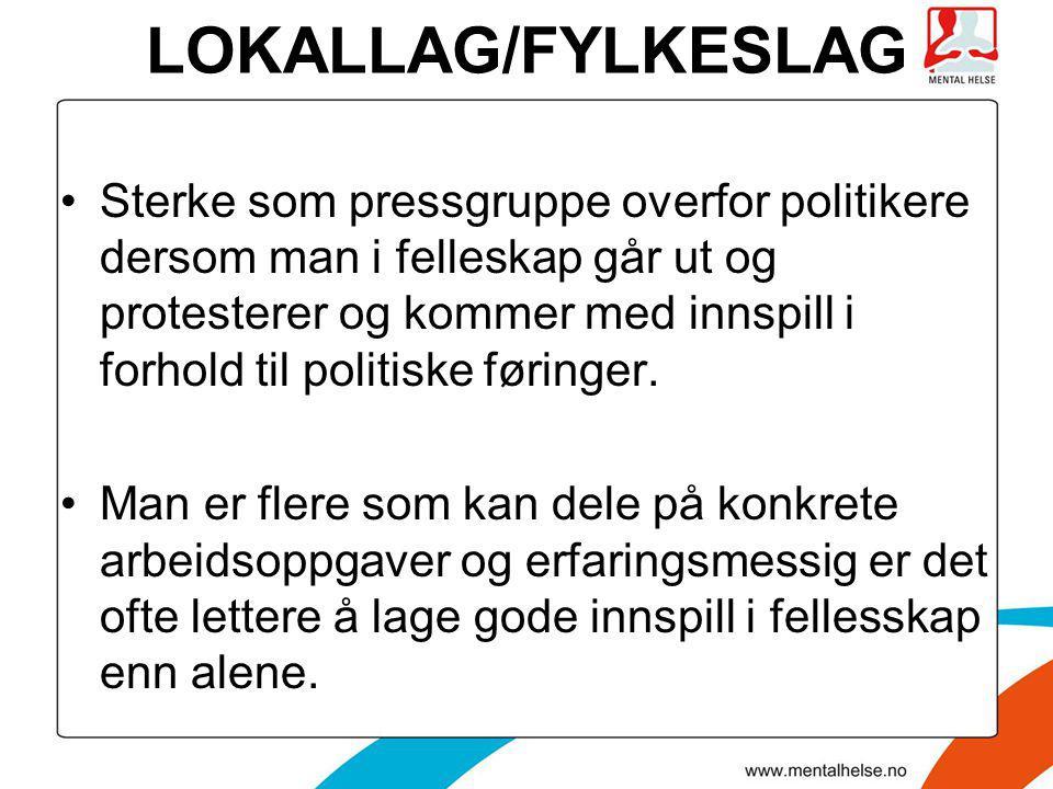 LOKALLAG/FYLKESLAG •Sterke som pressgruppe overfor politikere dersom man i felleskap går ut og protesterer og kommer med innspill i forhold til politi