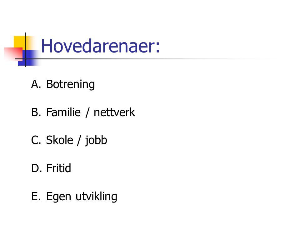 Hovedarenaer: A.Botrening B.Familie / nettverk C.Skole / jobb D.Fritid E.Egen utvikling