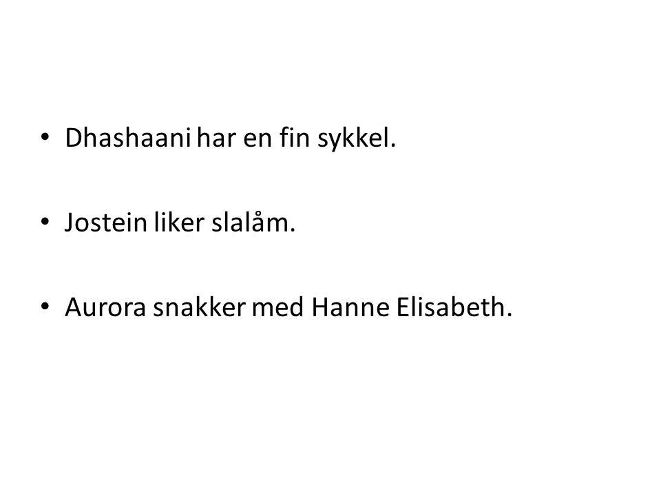 • Dhashaani har en fin sykkel. • Jostein liker slalåm. • Aurora snakker med Hanne Elisabeth.
