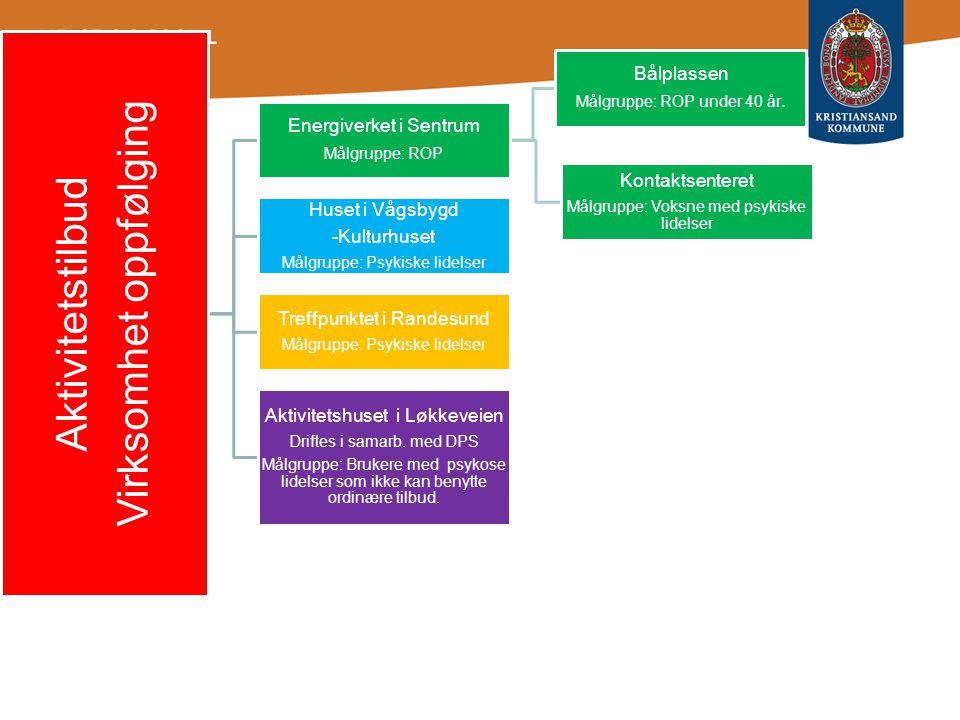 Bakgrunn og historikk •Opptrappingsplanen for psykisk helse •Vedtak i H/S styret •Store endringer i kommunen og tilbudet i 2.