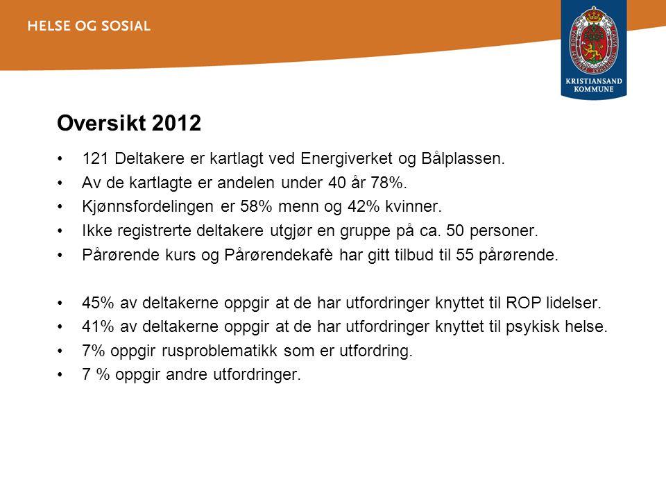 Oversikt 2012 •121 Deltakere er kartlagt ved Energiverket og Bålplassen. •Av de kartlagte er andelen under 40 år 78%. •Kjønnsfordelingen er 58% menn o