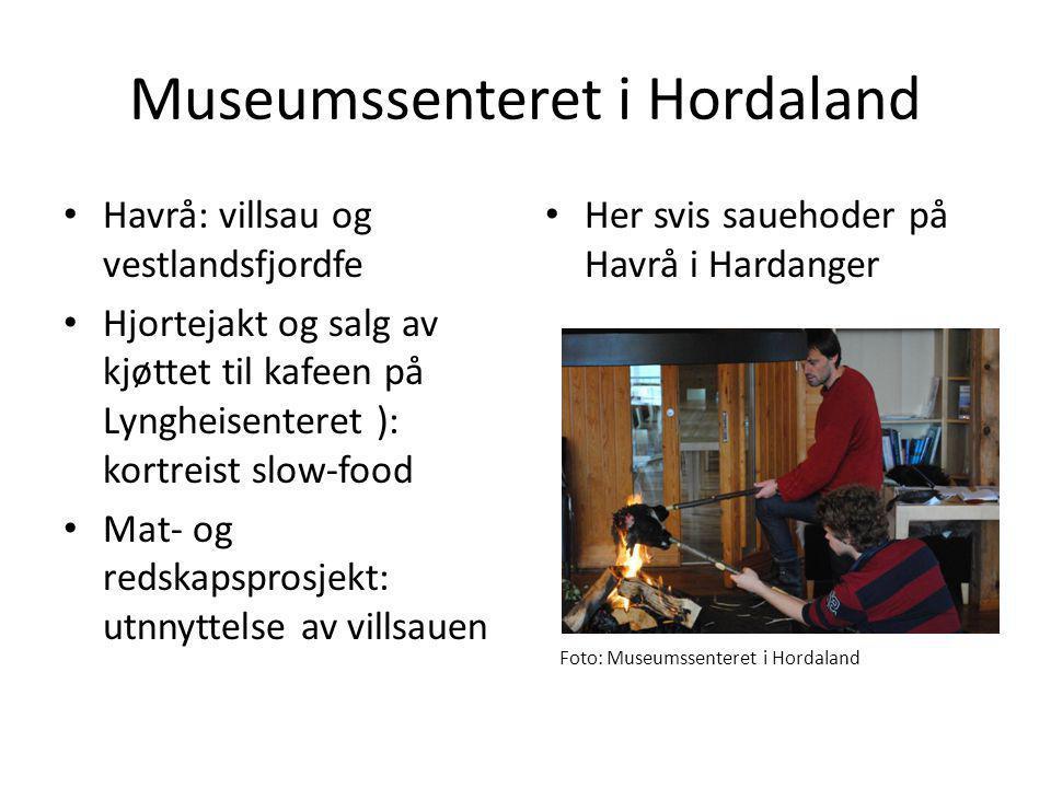 Museumssenteret i Hordaland • Havrå: villsau og vestlandsfjordfe • Hjortejakt og salg av kjøttet til kafeen på Lyngheisenteret ): kortreist slow-food