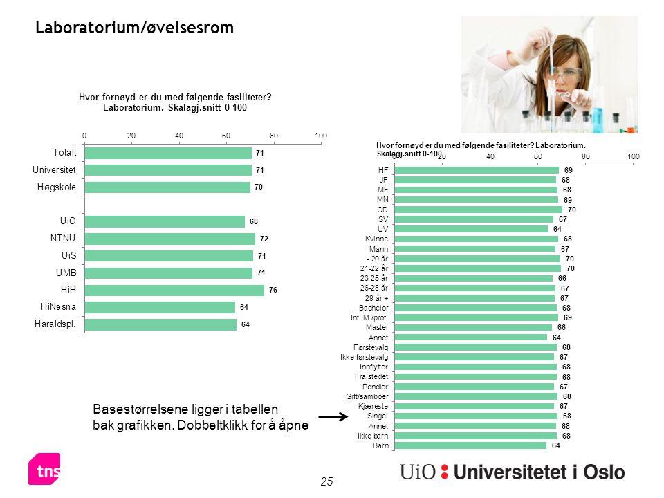 25 Laboratorium/øvelsesrom Basestørrelsene ligger i tabellen bak grafikken. Dobbeltklikk for å åpne
