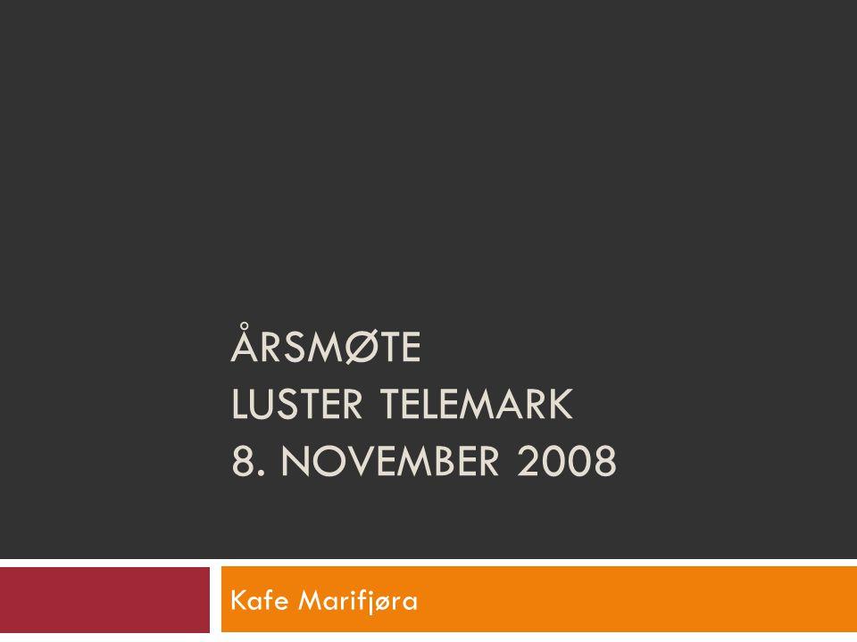 Saksliste  Historikk  Økonomi 2006-2009  Valg av nytt styre  Medlemkontigent  Korrigering av vedtekter  Ansvarsfordelinger  Prisutdelinger  www.lustertelemark.net  Diverse: Medlemsrabater…..