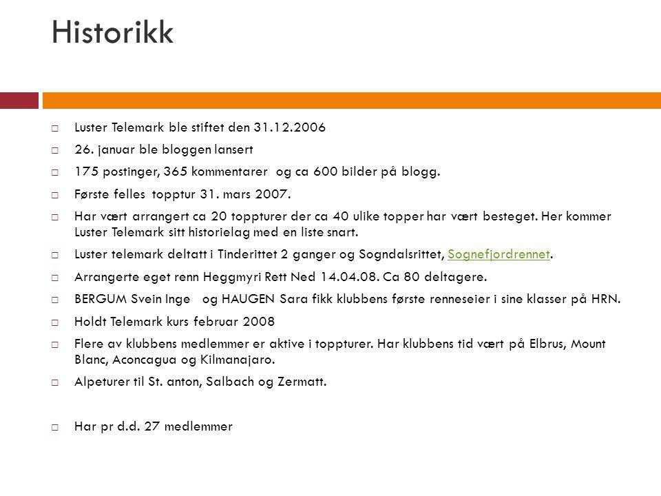 Historikk  Luster Telemark ble stiftet den 31.12.2006  26. januar ble bloggen lansert  175 postinger, 365 kommentarer og ca 600 bilder på blogg. 