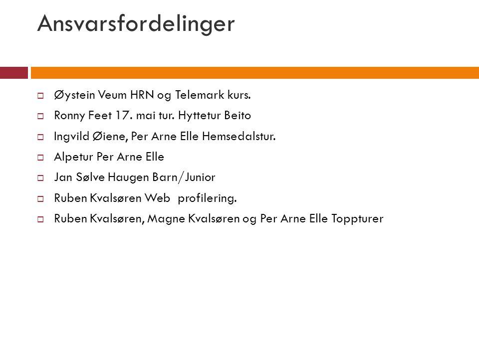 Ansvarsfordelinger  Øystein Veum HRN og Telemark kurs.  Ronny Feet 17. mai tur. Hyttetur Beito  Ingvild Øiene, Per Arne Elle Hemsedalstur.  Alpetu