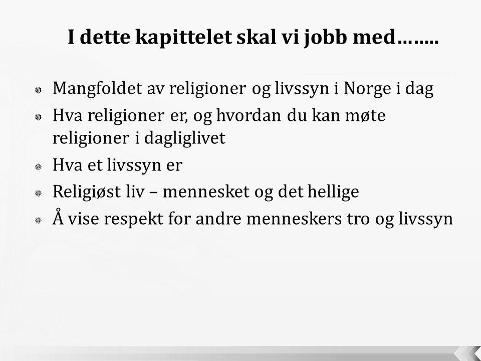  Mangfoldet av religioner og livssyn i Norge i dag  Hva religioner er, og hvordan du kan møte religioner i dagliglivet  Hva et livssyn er  Religiø