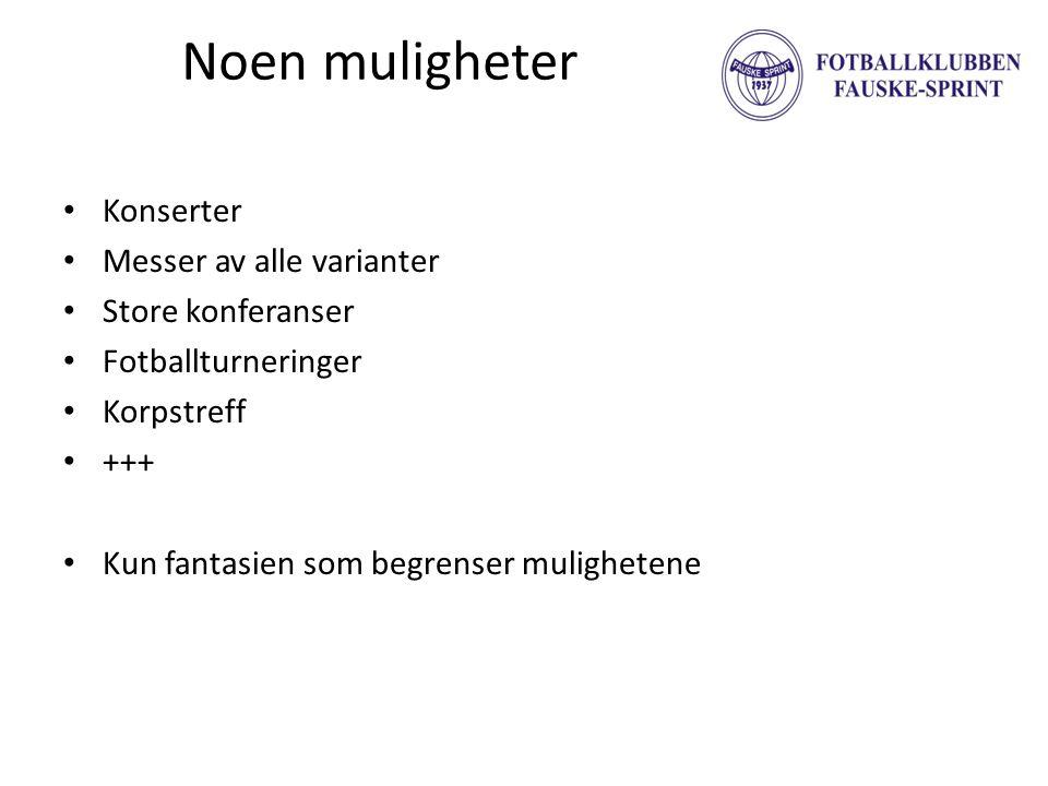 Driftsbudsjett • Driftsinntekterkr 1 400 000 – Dagtid (0,5 mnok) – Kveldstid (0,5 mnok) – Arrangement (0,1 mnok) – Kafe/reklame++ (0,3 mnok) • Driftskostnaderkr -1 250 000 – Personalkost (0,6 mnok) – Strøm (0,3 mnok) – Vedlikehold (0,1 mnok) – Varekost (0,1 mnok) – Annet (0,2 mnok) • Driftsresultatkr 150 000 • Rentekostnaderkr 0 • Resultat før skattkr 150 000 Timepris hel time: Nordlandshallen: kr 2.040 Stålhallen: kr 2.000 Blåbyhallen: kr 1.430 Saltenhallen: Dagtid: kr 1.000 Kveldstid: kr 600