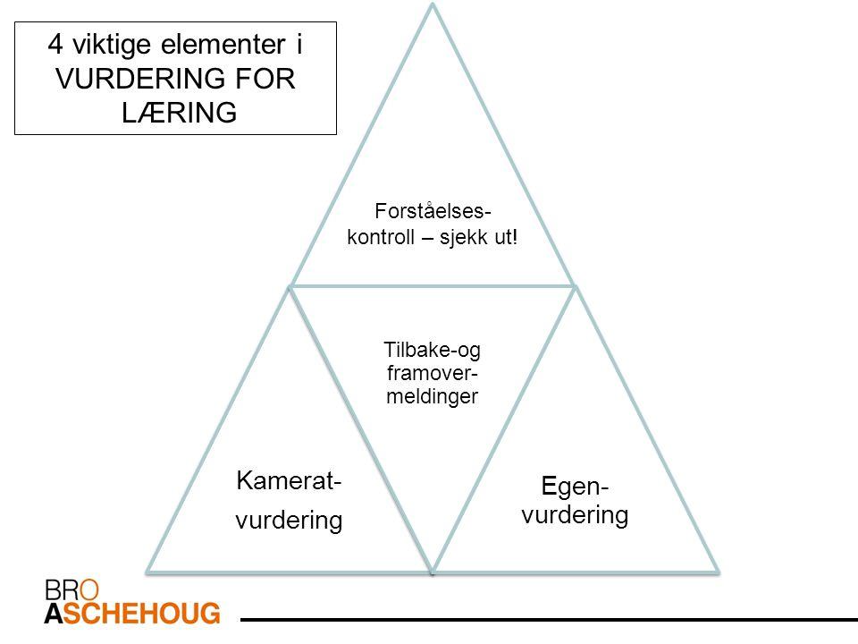 Kamerat- vurdering Kamerat- vurdering Tilbake-og framover- meldinger Tilbake-og framover- meldinger Egen- vurdering 4 viktige elementer i VURDERING FOR LÆRING Forståelses- kontroll – sjekk ut!