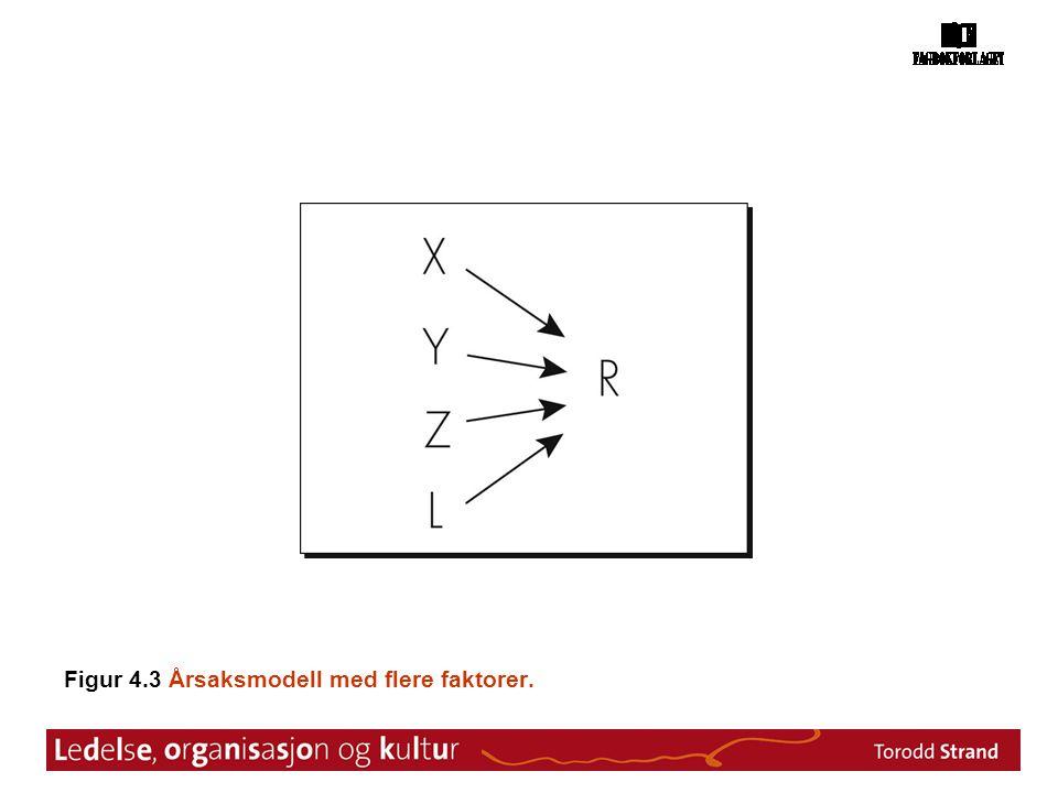 Figur 4.3 Årsaksmodell med flere faktorer.