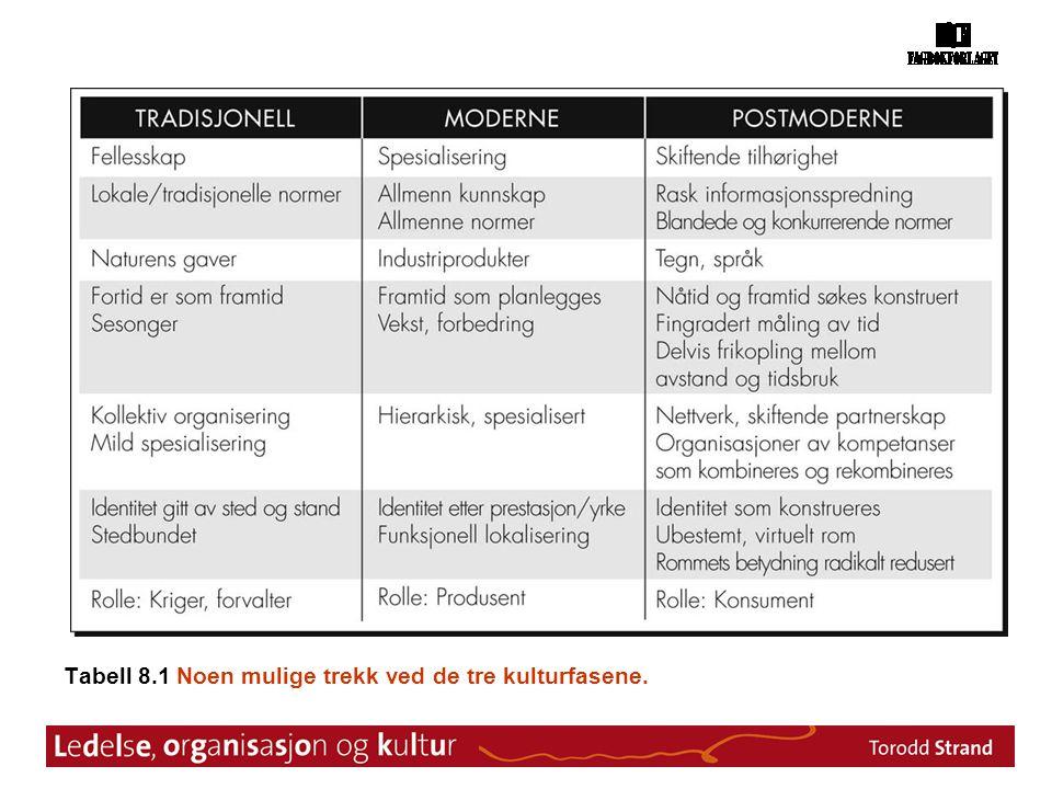 Tabell 8.1 Noen mulige trekk ved de tre kulturfasene.