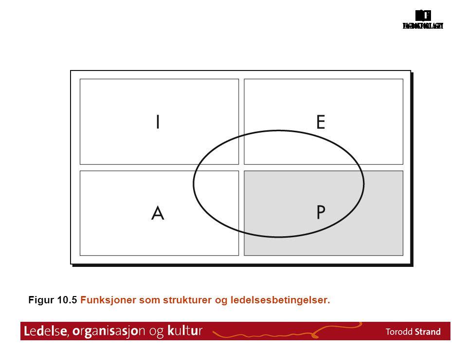Figur 10.5 Funksjoner som strukturer og ledelsesbetingelser.