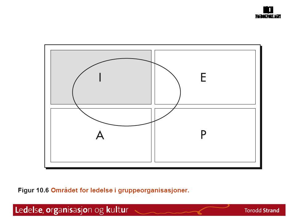 Figur 10.6 Området for ledelse i gruppeorganisasjoner.