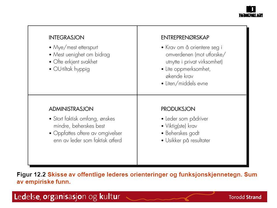 Figur 12.2 Skisse av offentlige lederes orienteringer og funksjonskjennetegn. Sum av empiriske funn.