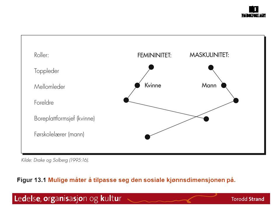 Figur 13.1 Mulige måter å tilpasse seg den sosiale kjønnsdimensjonen på.