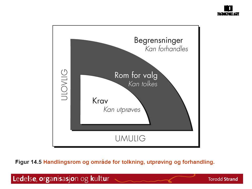 Figur 14.5 Handlingsrom og område for tolkning, utprøving og forhandling.