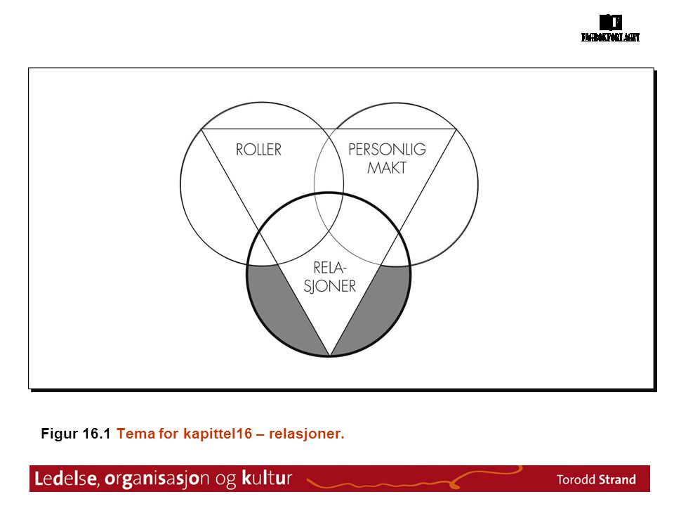 Figur 16.1 Tema for kapittel16 – relasjoner.