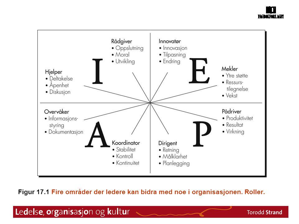 Figur 17.1 Fire områder der ledere kan bidra med noe i organisasjonen. Roller.