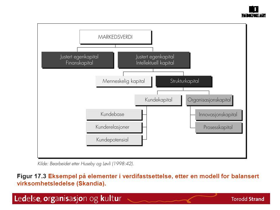 Figur 17.3 Eksempel på elementer i verdifastsettelse, etter en modell for balansert virksomhetsledelse (Skandia).