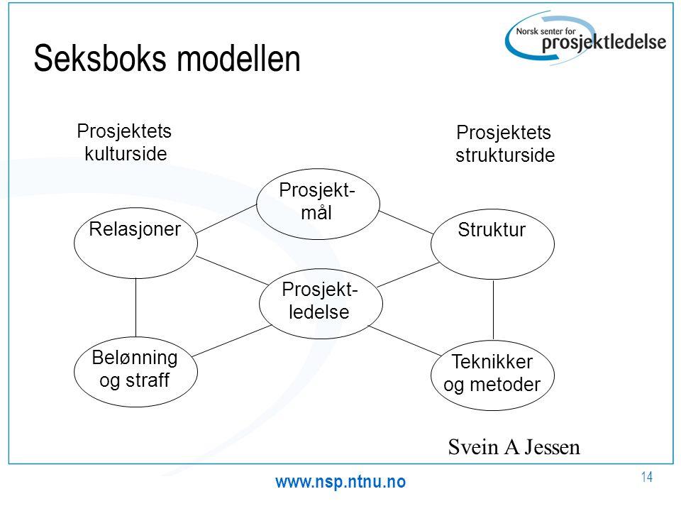www.nsp.ntnu.no 14 Seksboks modellen Prosjektets kulturside Prosjektets strukturside Prosjekt- mål Prosjekt- ledelse StrukturTeknikker og metoder Rela